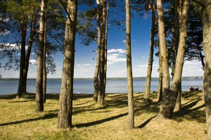 Nad jeziorem Gołdapiwo-Kąpielisko