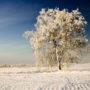 Mazury zim?