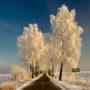 Zimowe Mazury – dla stęsknionych za prawdziwą zimą!